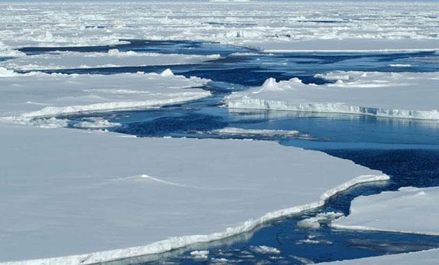 Arktik deniz buzu tarihin en düşük seviyesinde