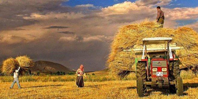 Tarım ÜFE ile ilgili görsel sonucu