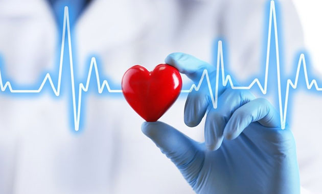 Kalp zarından aort kapağı