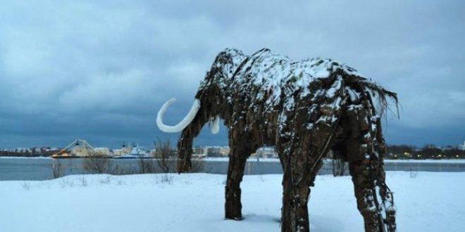 Fil benzeri dev hayvan fosili bulundu!