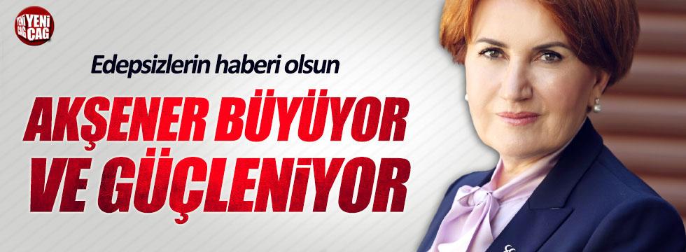 Rahmi Turan: Edepsizlerin haberi olsun, Akşener güçleniyor!