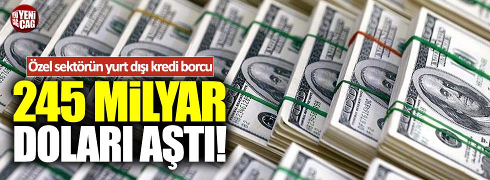 Özel sektörün yurt dışı kredi borcu 245 milyar doları aştı