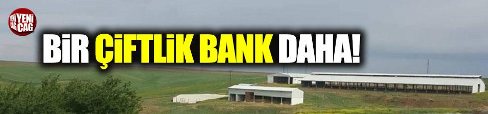 Bir Çiftlik Bank vakası daha