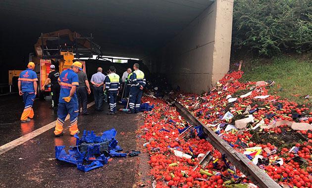 TEM'de domates yüklü kamyon devrildi