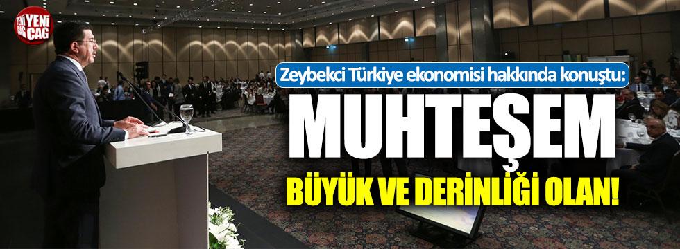 """Zeybekci: """"Türkiye ekonomisi muhteşem, büyük ve derinliği olan..."""""""