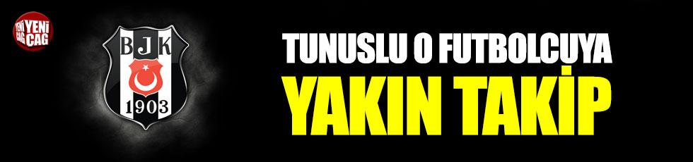 Beşiktaş, Tunuslu o yıldızın peşinde