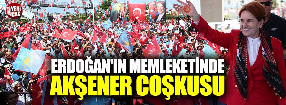 Akşener'den Erdoğan'a 'kıraathane' tepkisi