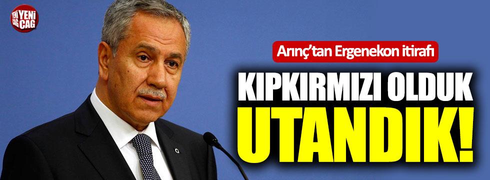 Bülent Arınç'tan Ergenekon itirafı!