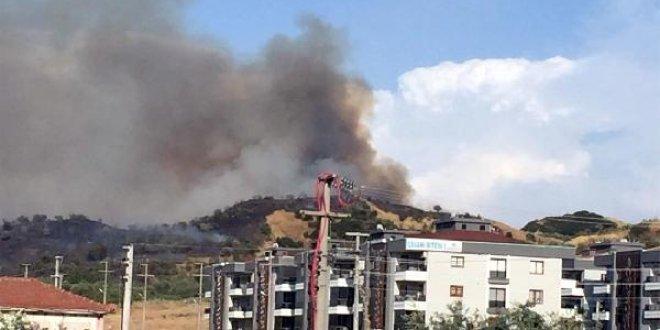 Manisa'da orman yangını!