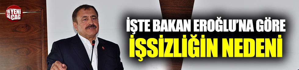 Bakan Eroğlu'ndan tepki çeken işsizlik açıklaması