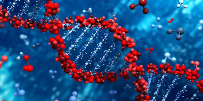 Kanserin yayılmasında en önemli 11 gen bulundu