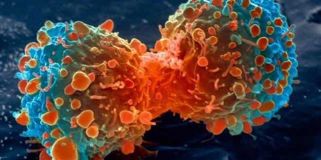 O ilaç kanserin ilerlemesini durduruyor