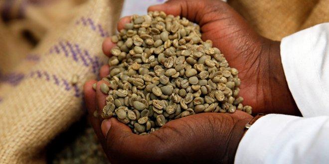 Kahve kalp sağlığını güçlendirebilir