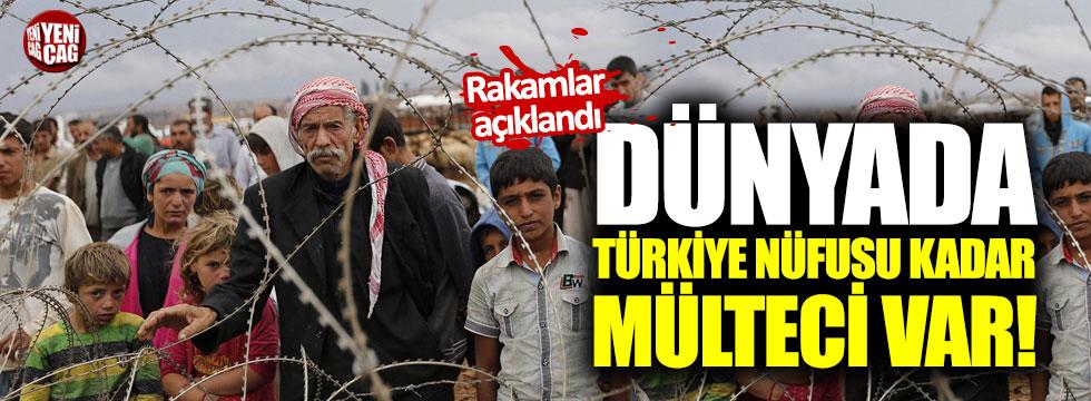 Dünyada Türkiye'nin nüfusu kadar mülteci var!