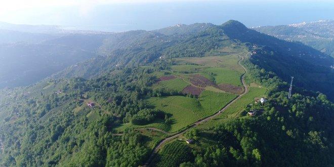 Dağın zirvesine OSB kurulacak