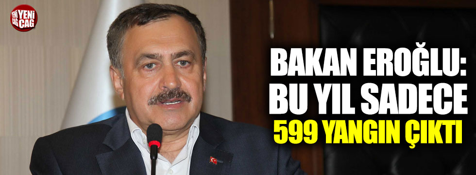 Bakan Eroğlu'ndan yangın açıklaması
