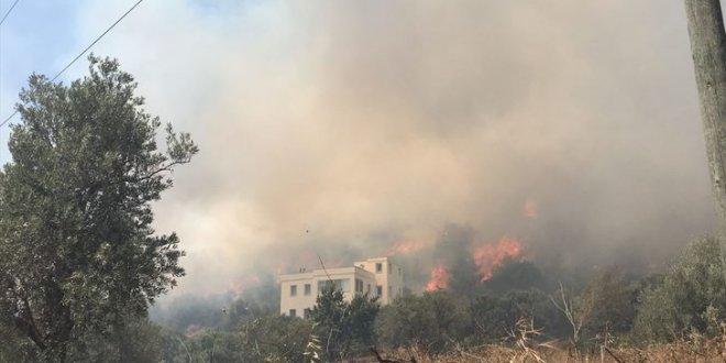 Bodrum'da büyük yangın