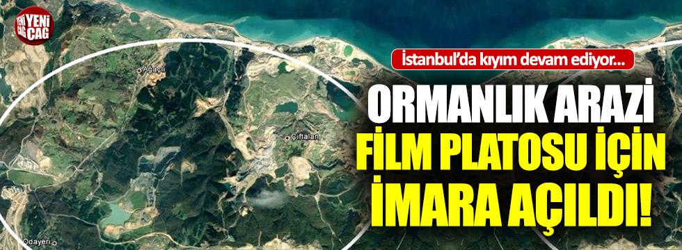 İstanbul'da orman katliamına devam: İmara açıldı!