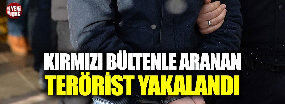 Kırmızı bülten ile aranan terörist yakalandı