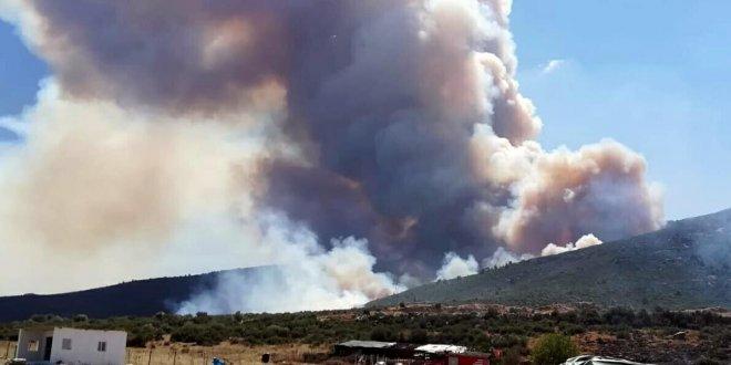 İzmir'de 45 hektarlık orman yangını
