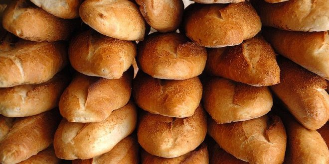 14 bin yıl öncesine ait ekmek tarifi bulundu