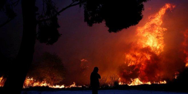Orman Bakanı Pakdemirli'den Yunanistan açıklaması