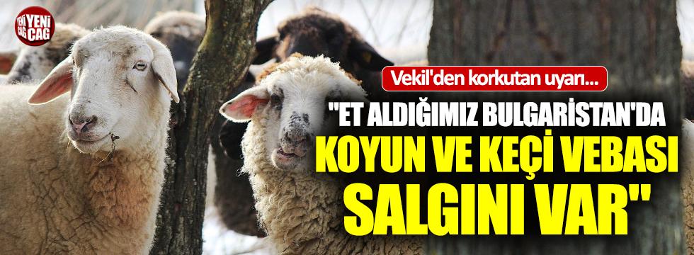 Et ithal ettiğimiz Bulgaristan'da veba salgını!