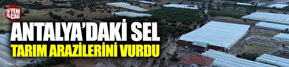 Antalya'daki sel tarım arazilerini vurdu
