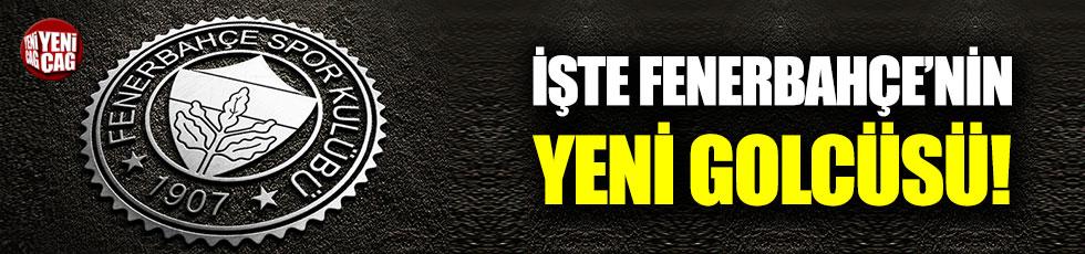 İşte Fenerbahçe'nin yeni golcüsü!