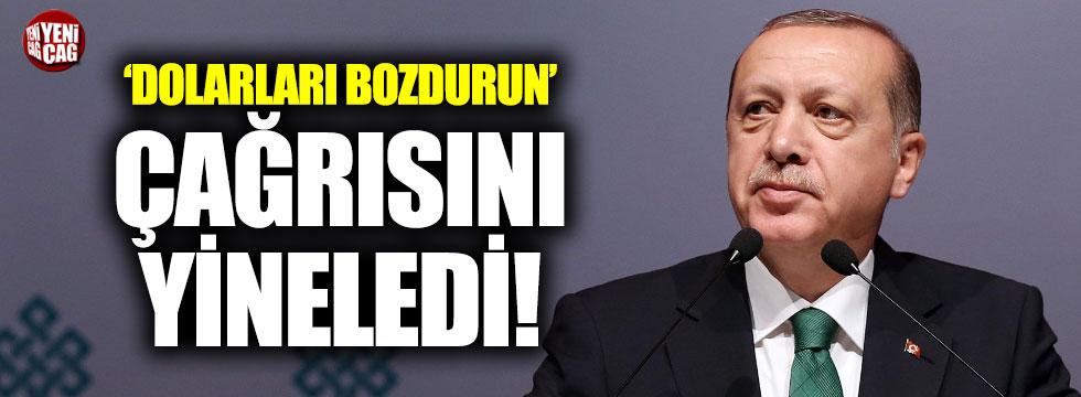 Erdoğan, dolar çağrısını yineledi