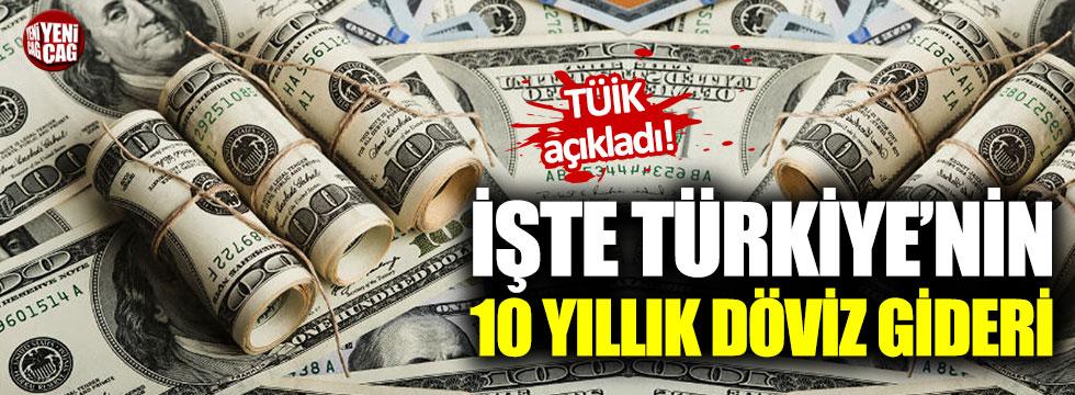 İşte Türkiye'nin 10 yıllık döviz gideri!