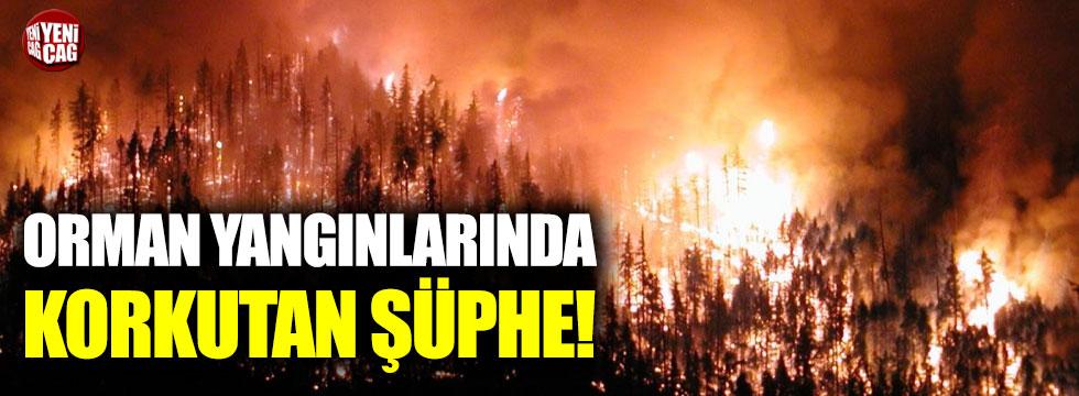 Orman yangınlarında korkutan şüphe