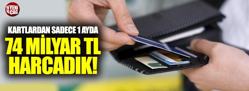 Bir ayda 74 milyar TL'lik ödeme karttan