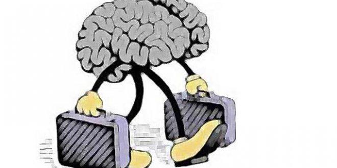 Beyin göçü