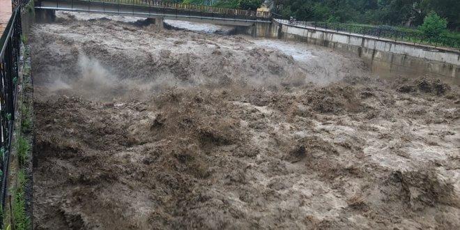 Ordu'daki selin bilançocu: Bin 100 ton fındık zarar gördü