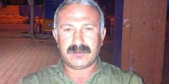 4 şehidin ardından DBP'li belediye başkanına gözaltı