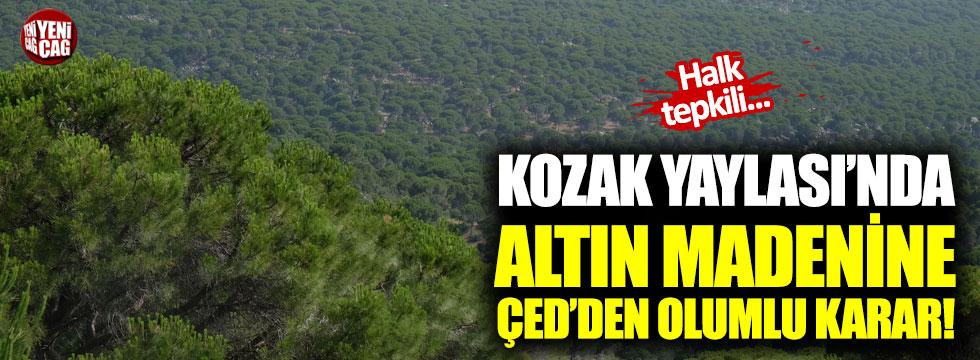 İzmir'deki altın madenine ÇED'den olumlu karar!