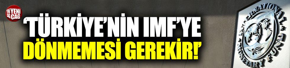 """""""Türkiye'nin IMF'ye dönmemesi gerekir"""""""