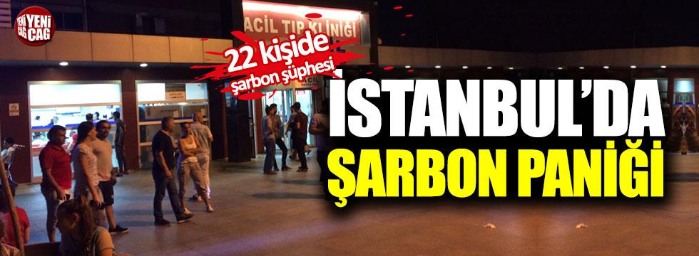 İstanbul'da şarbon paniği!