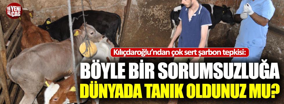 Kılıçdaroğlu'ndan şarbon tepkisi