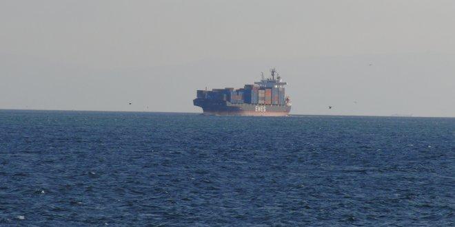 Gizemli gemide şarbonlu hayvanlar mı var?
