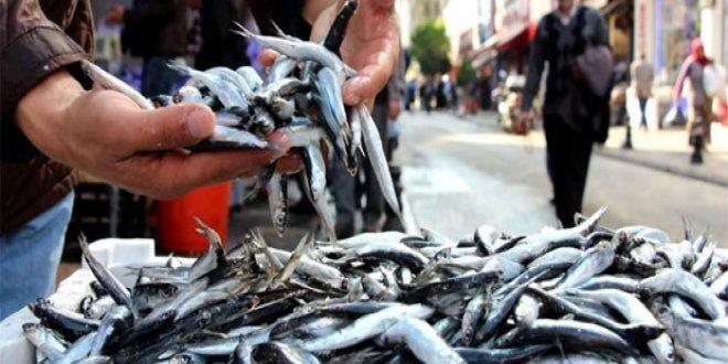 Olumsuz hava balık fiyatlarını vurdu