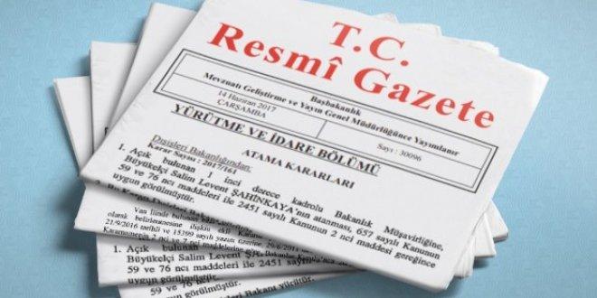 Varlık Fonu'nun yeni başkanı Erdoğan oldu!