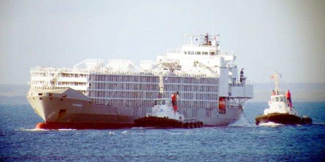 Şarbon iddiaları olan gemi Çeşme'de