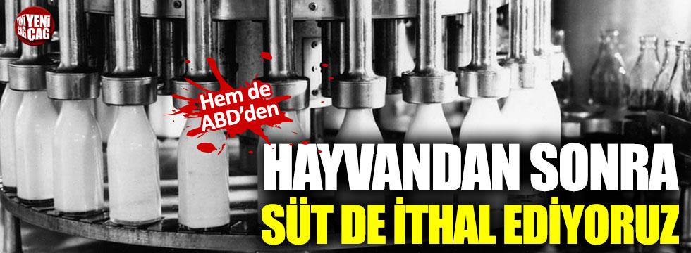 Türkiye, ABD'den süt ürünleri ithal edecek