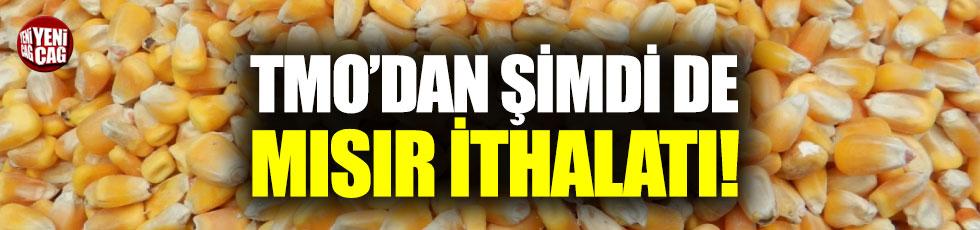 TMO'dan şimdi de mısır ithalatı