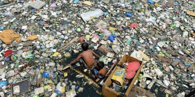 Plastik yiyen mantar çöp krizine çare olabilir