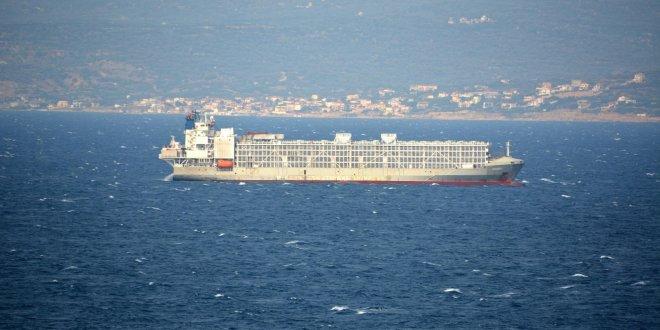 Şarbonlu hayvanları getiren gemi ile ilgili önemli iddia