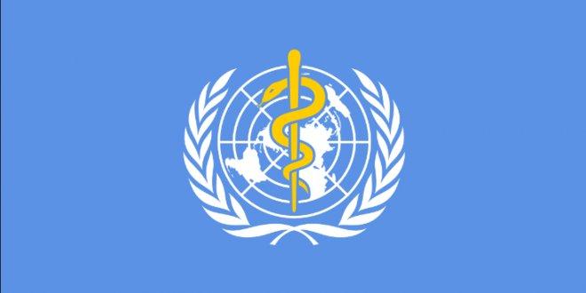 DSÖ'den çarpıcı rapor: O sebepten yılda 3 milyon insan ölüyor