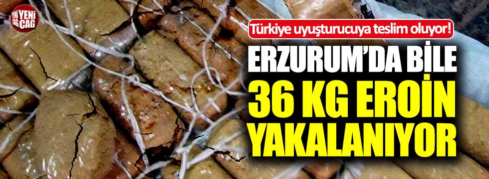Türkiye uyuşturucuya teslim oluyor!
